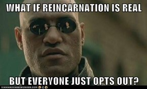 WHAT IF REINCARNATION IS REAL  BUT EVERYONE JUST OPTS OUT?