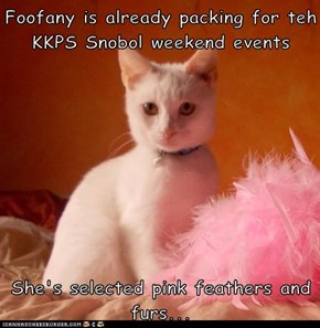 Foofany is already packing for teh KKPS Snobol weekend events  She's selected pink feathers and furs...