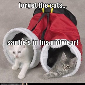 forget the cats... santie's in his undwear!
