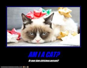 AM I A CAT?