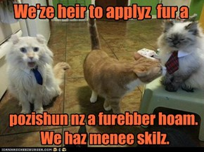Wanted: Poor Hoamless Kittehs. Puleez Apply Within.