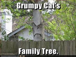 Grumpy Cat's  Family Tree.