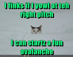 I finks if I yowl at teh right pitch  I can startz a fun avalanche