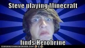 Steve playing Minecraft  finds Herobrine