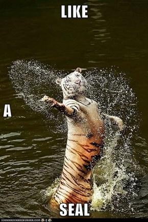 LIKE  A SEAL