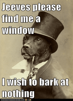 Jeeves please find me a window  I wish to bark at nothing
