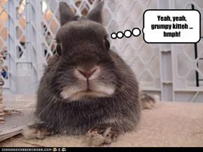 Yeah, yeah, grumpy kitteh ... hmph!