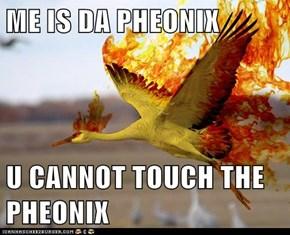 ME IS DA PHEONIX  U CANNOT TOUCH THE PHEONIX
