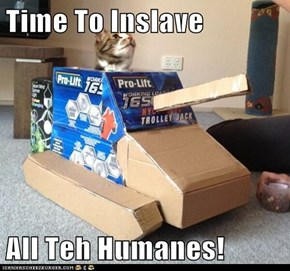 Time To Inslave  All Teh Humanes!