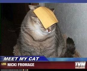 MEET MY CAT - NICKI FROMAGE