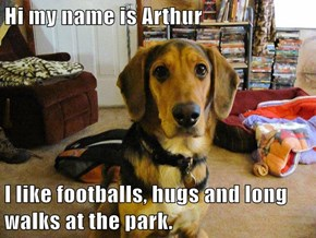 Hi my name is Arthur  I like footballs, hugs and long walks at the park.