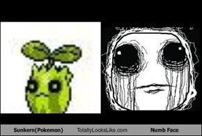 Sunkern(Pokemon) Totally Looks Like Numb Face