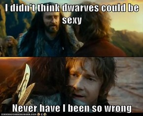 I didn't think dwarves could be sexy  Never have I been so wrong