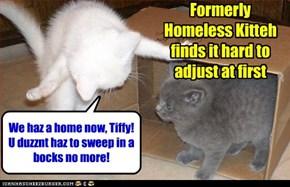 We gotz a big peeple bed wif fluffly comferterz n flannel sheets n eberyfing!