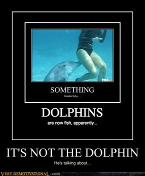 IT'S NOT THE DOLPHIN