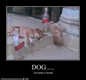 DOG.....