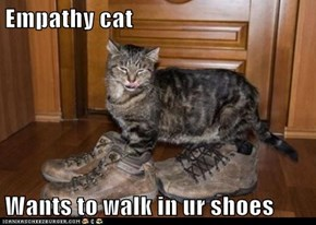 Empathy cat  Wants to walk in ur shoes