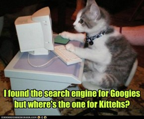 I found the search engine for Googies but where's the one for Kittehs?