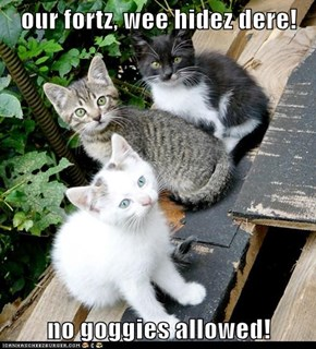 our fortz, wee hidez dere!  no goggies allowed!