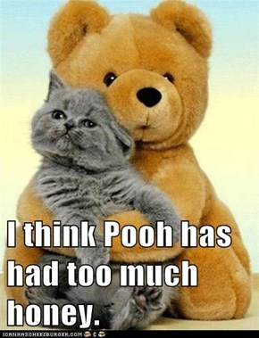 I think Pooh has had too much honey.