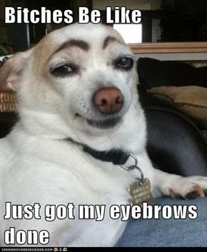Bitches Be Like  Just got my eyebrows done