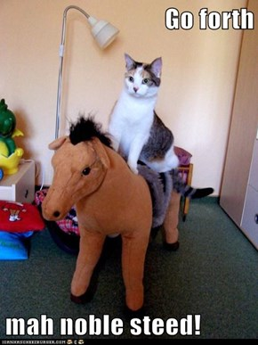 Go forth  mah noble steed!