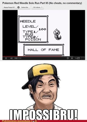 All hail the wonderous Weedle!
