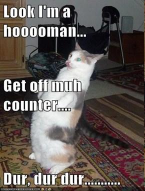 Look I'm a hooooman... Get off muh counter.... Dur, dur dur...........