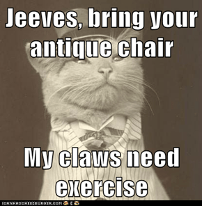 Jeeves, bring your antique chair  My claws need exercise