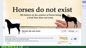 I Wish That Horses Existed...