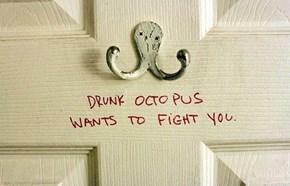 You're Not So Tough, Drunk Octopus