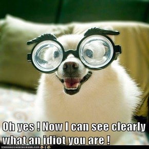 Oh yes ! Now I can see clearly what an idiot you are !
