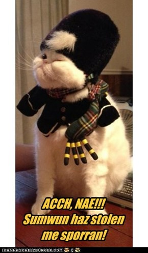 Because Scottish kittehs get neutered, too