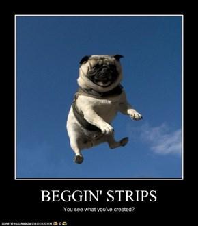 BEGGIN' STRIPS