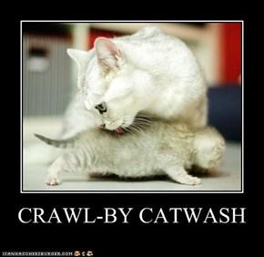 CRAWL-BY CATWASH