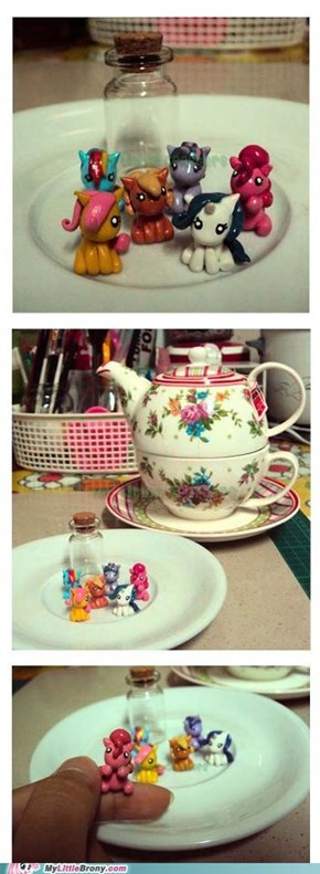 Teacup buddies.
