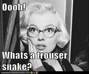 Oooh!  Whats a trouser snake?