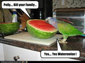 Yes.... Yes Watermelon !