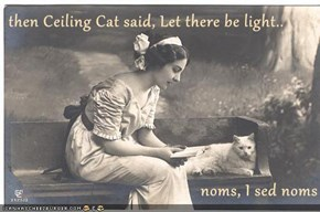 then Ceiling Cat said, Let there be light..  noms, I sed noms
