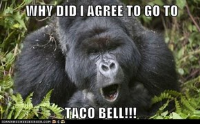 WHY DID I AGREE TO GO TO   TACO BELL!!!