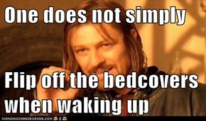 One does not simply  Flip off the bedcovers when waking up