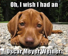 Oh, I wish I had an  Oscar Meyer Weiner.