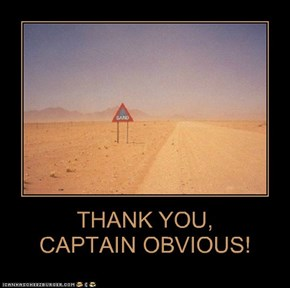 THANK YOU, CAPTAIN OBVIOUS!