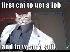first cat to get a job  and to wear a suit