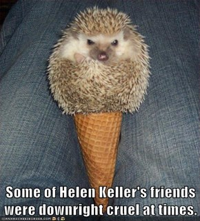 Some of Helen Keller's friends were downright cruel at times.