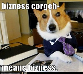 bizness corgeh-  means bizness.