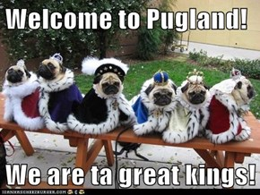 Welcome to Pugland!  We are ta great kings!