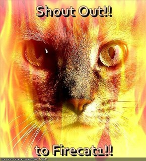 Shout Out!!  to Firecat1!!
