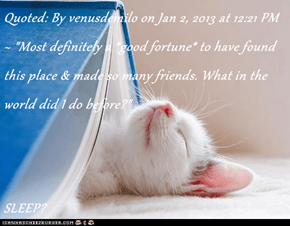 "Quoted: By venusdemilo on Jan 2, 2013 at 12:21 PM ~ ""Most definitely a *good fortune* to have found this place & made so many friends. What in the world did I do before?""  SLEEP?"