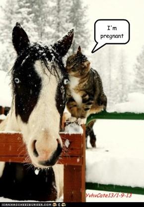 Preggers ...